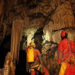 Grotte Nouvelle: im Sinter-Wald